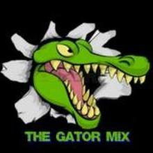 TheGatorMix