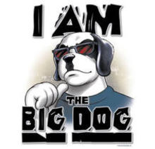 BigDogfl